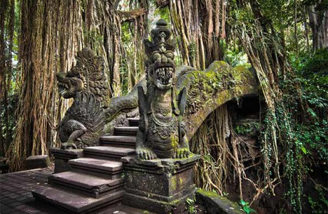 Drakbron i Monkey Forrest