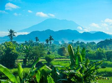 Sevärdheter Bali